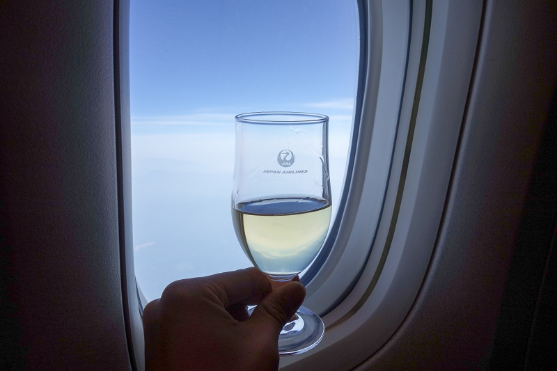 JALの国内線ファーストクラスからの機窓