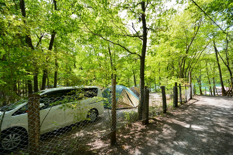 四尾連湖畔でキャンプを楽しむ人々