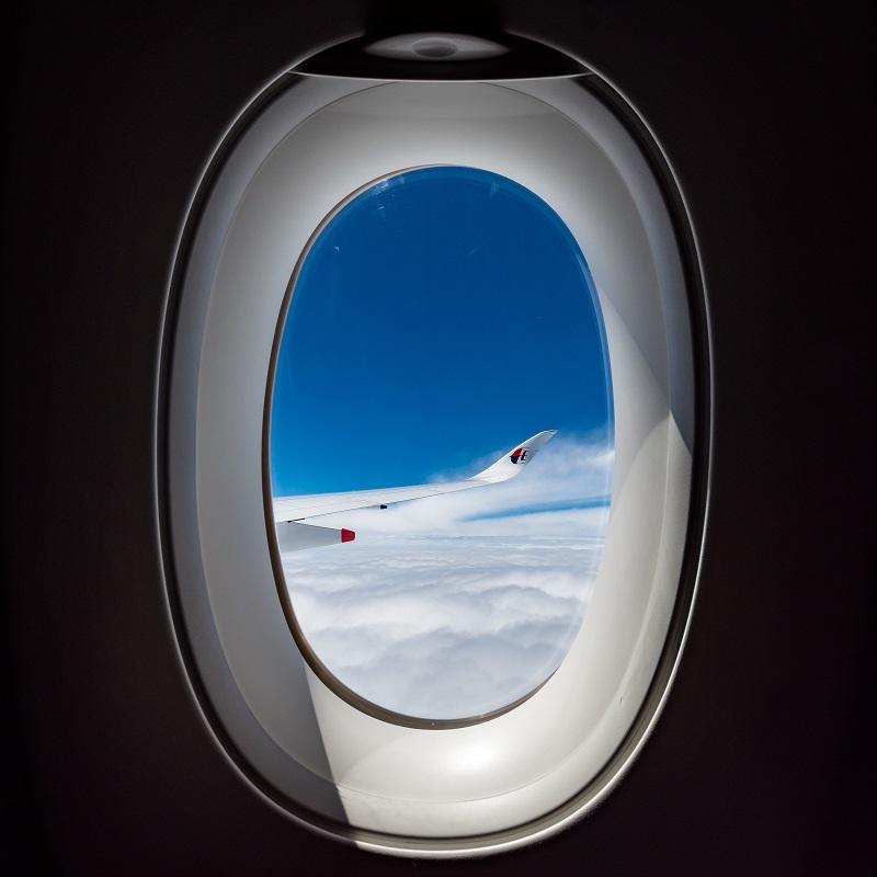 A350の曲線的な翼と大きな窓のコラボ