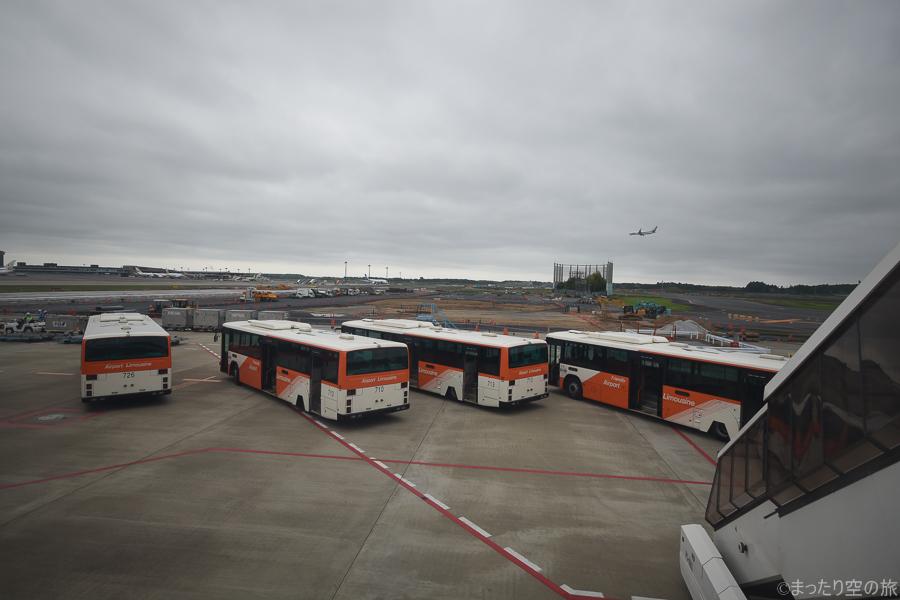 到着客を出迎えるランプバスたち