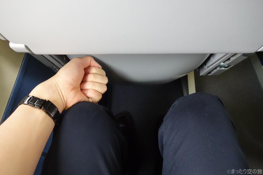 握り拳1個分の座席の足元広さ