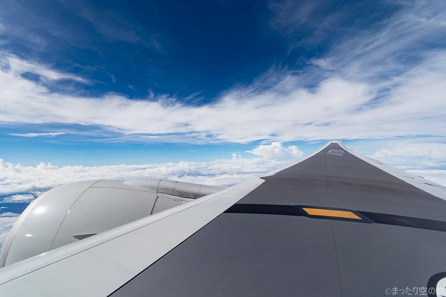 広い翼と巨大なGE90-115Bの機窓