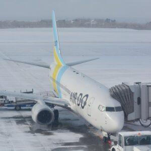 函館空港展望デッキから望む搭乗機