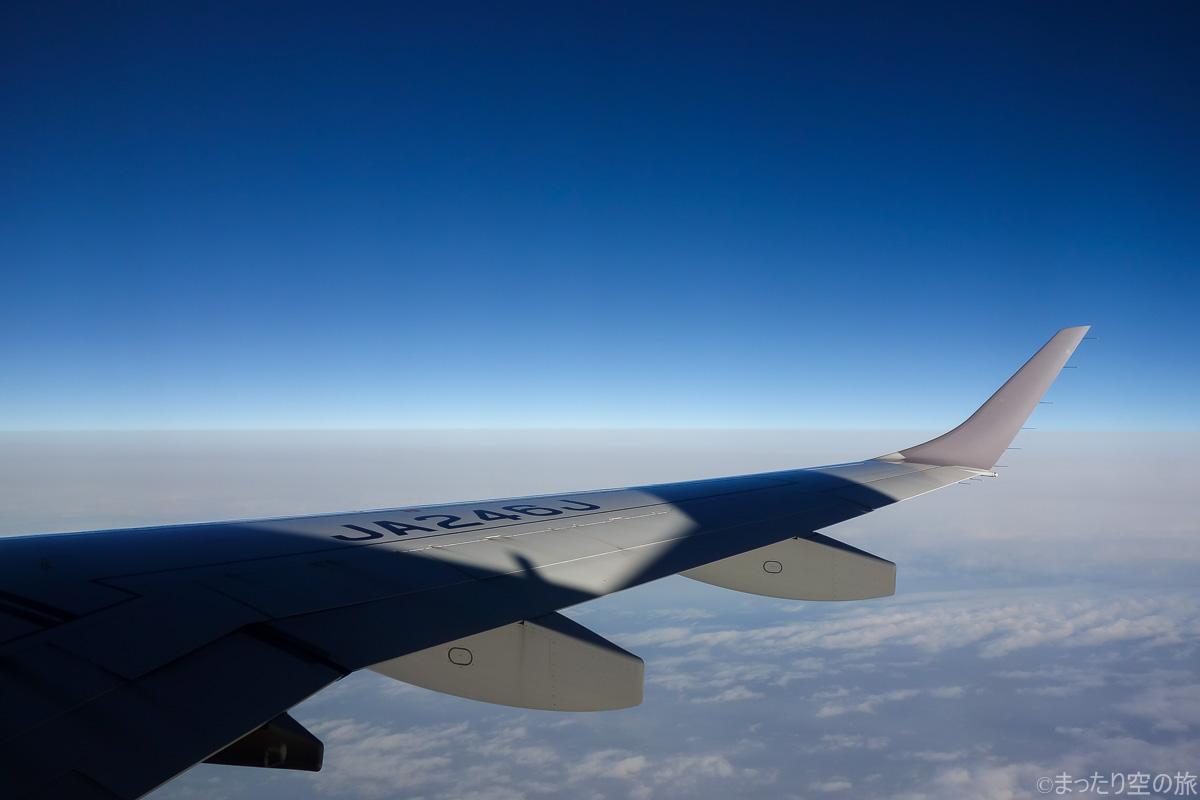 E190型機の翼