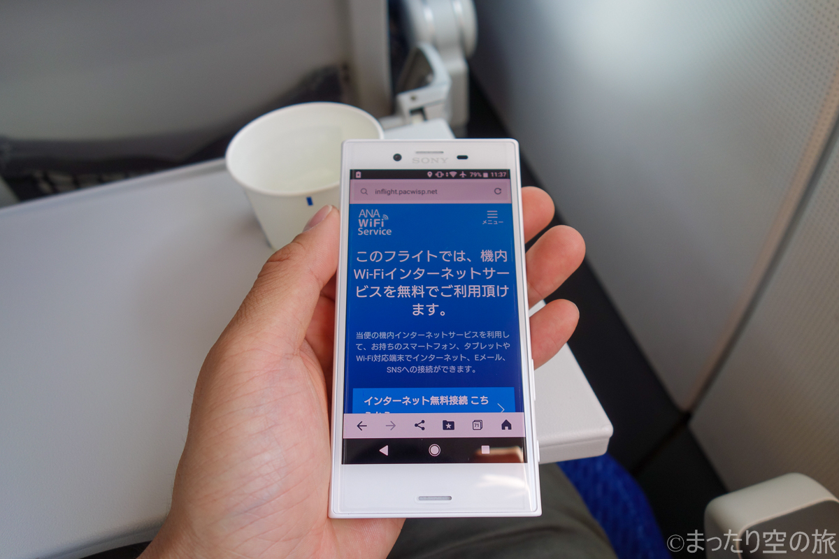 機内Wi-Fi接続画面