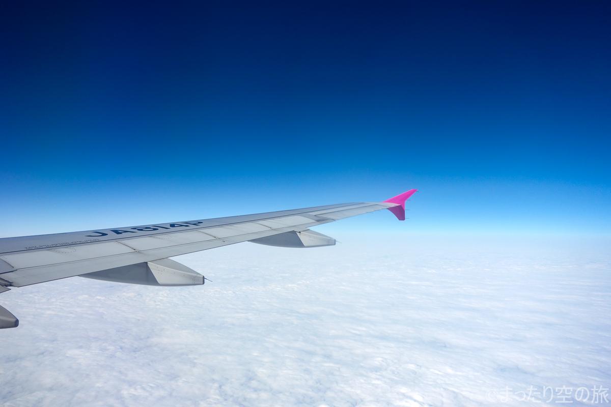水平飛行時の翼の様子