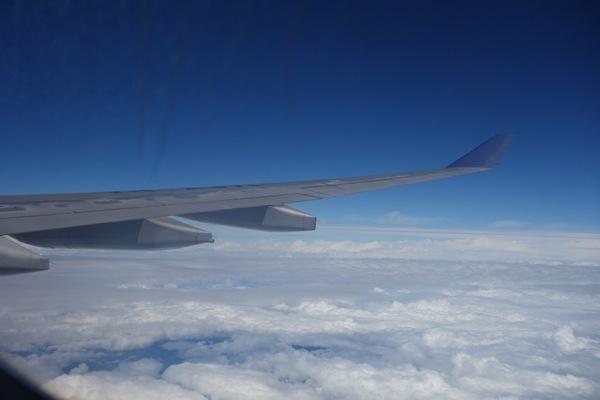 スカイチーム特別塗装機A330の機内から見た翼