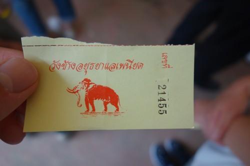 象乗りツアーのチケット