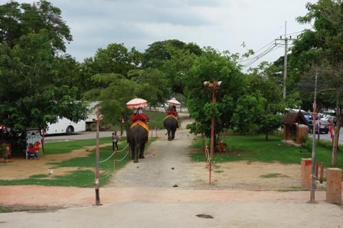 象乗りツアーのコース