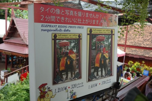 自分が象に乗っている姿を撮影・販売してくれるサービスの案内看板