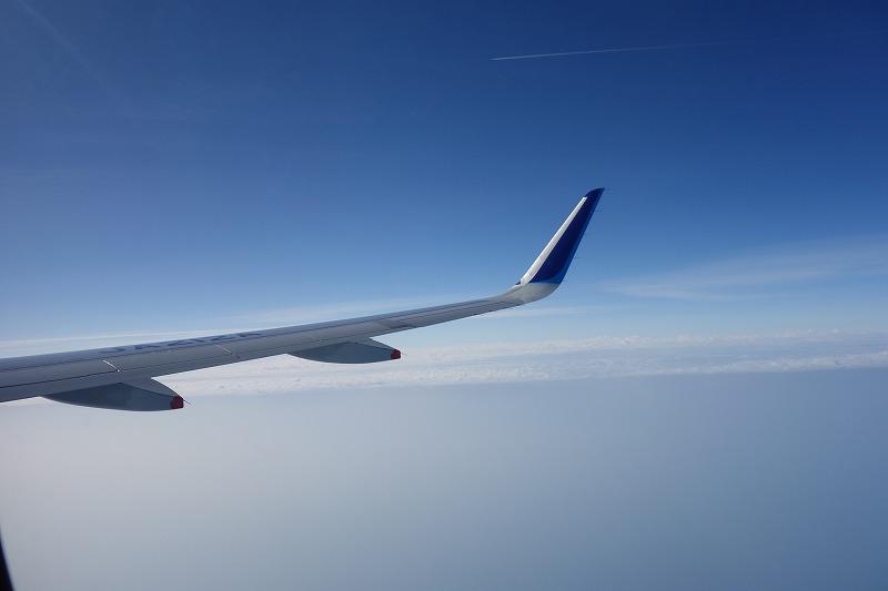A320neoの翼とウイングレット