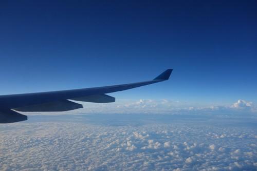 早朝に飛行中のA330型機の翼と風景