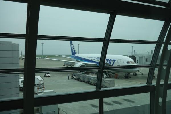 搭乗機のANAのB787-8型機