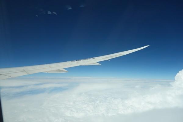 水平飛行中のB787型機の翼