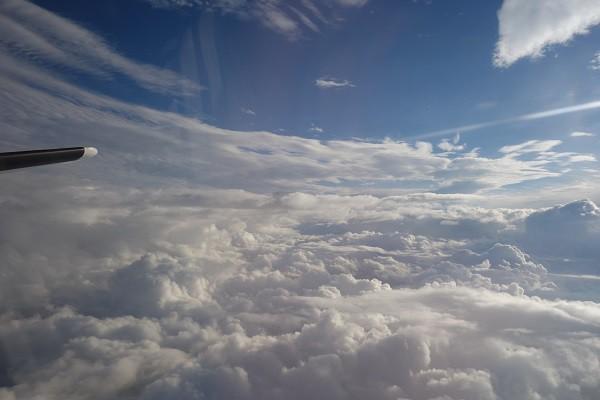 機内から見える水平尾翼