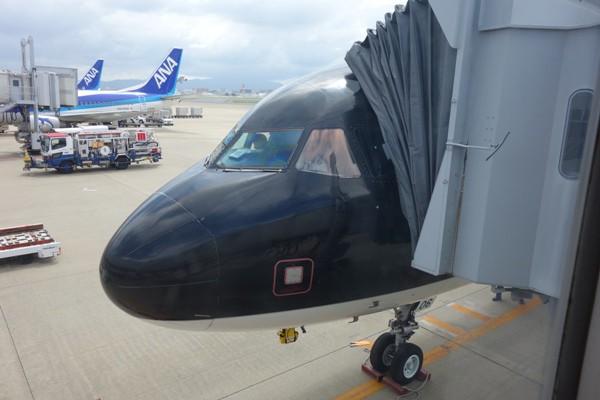 搭乗機のスターフライヤーのA320型機(JA06MC)の機首