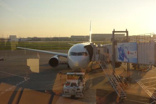 搭乗機のJALのB767-300(JA8364)