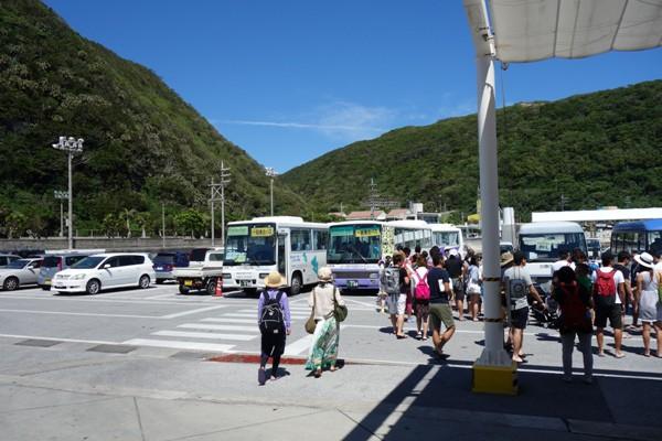 渡嘉敷港にて乗客を待つ各ビーチ行きの連絡バス
