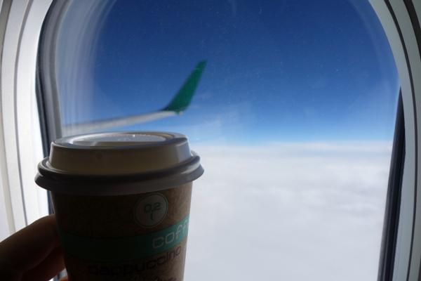 機内販売で購入したお茶と翼の景色