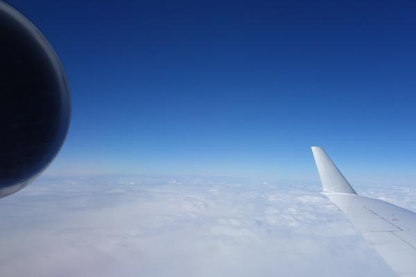 CRJ200の後部エンジンと翼を絡めた景色