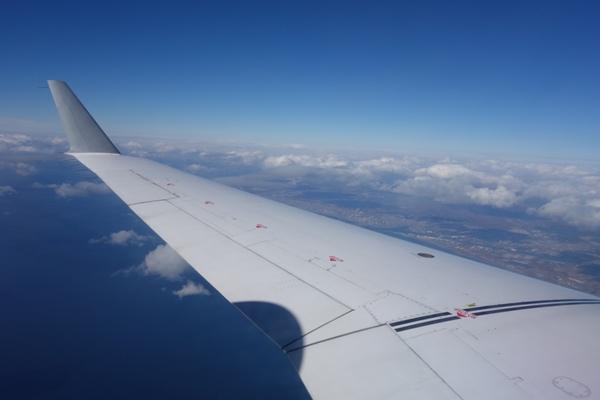 CRJ200型機の翼