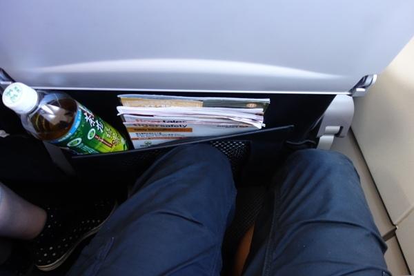 シートポケットにペットボトルを収納し、さらに前席が倒れてきた時の狭い足元