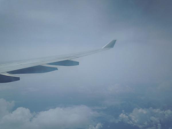 大して見どころのない水平飛行時の景色