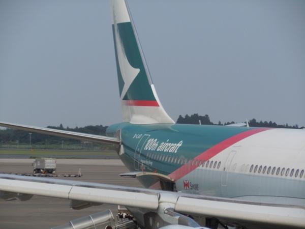 胴体後部に塗装された100th aircraft特別塗装