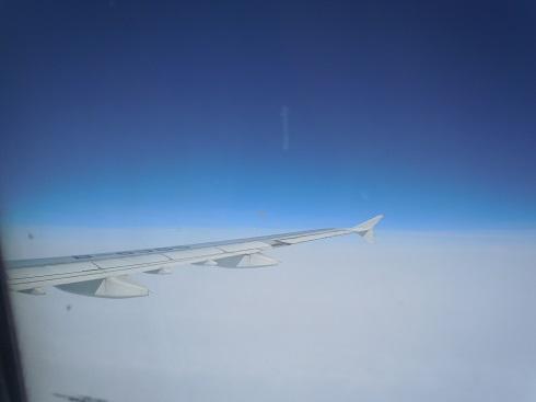 機内よりみたA321型機の翼