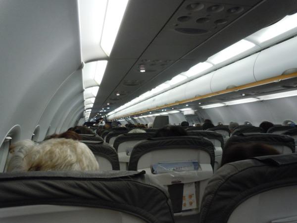 ほぼ満席の機内
