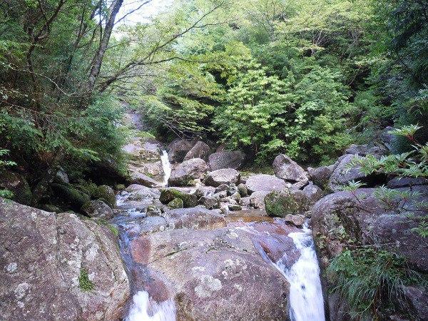 屋久島に流れる小川
