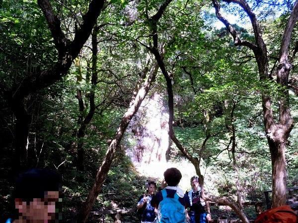 他の登山者で賑わう縄文杉の撮影スポット