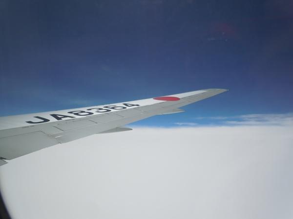 水平飛行中の機窓