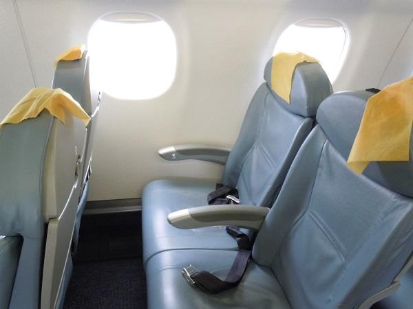 FDAのE175型機の普通席