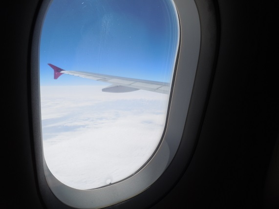 機内から見たA320型機のピンク色のウイングレット