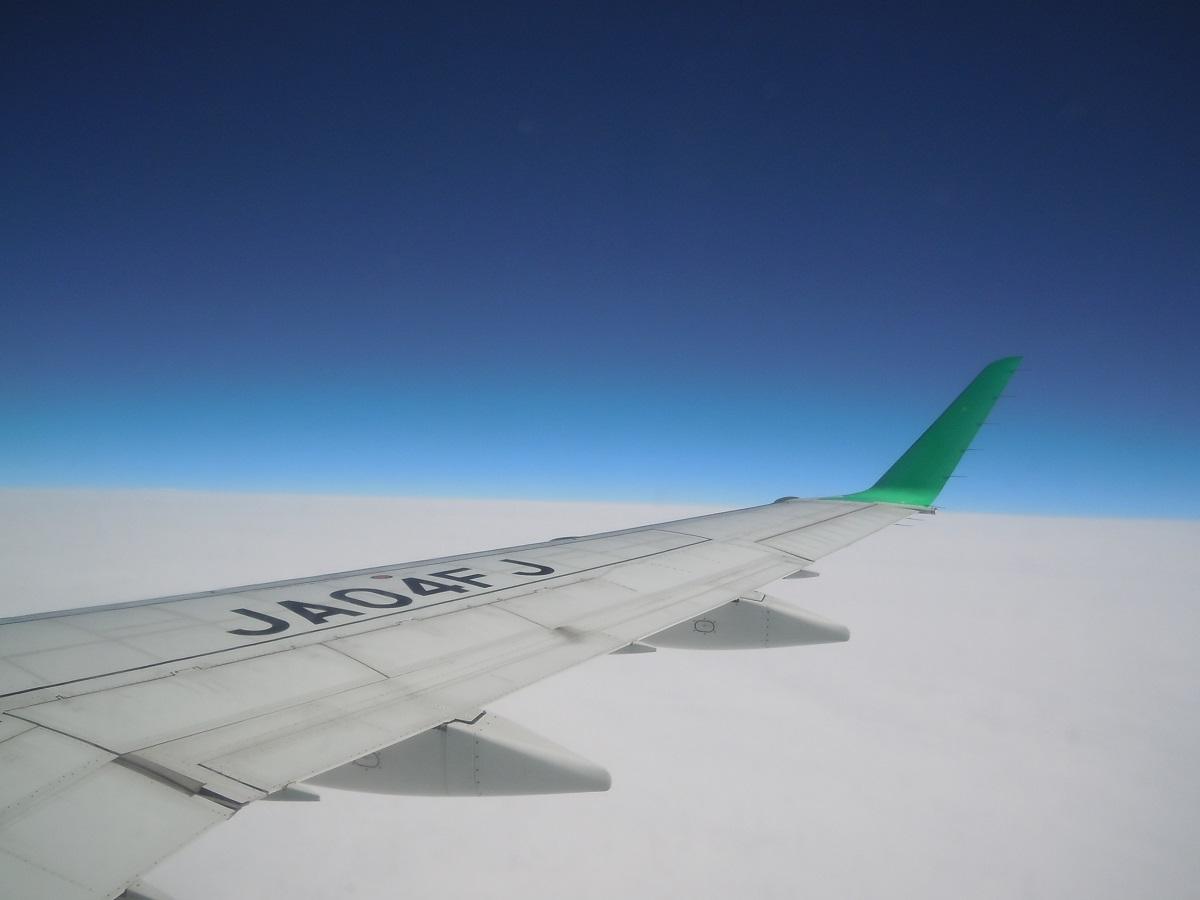 FDAのE170型機(JA04FJ)の翼