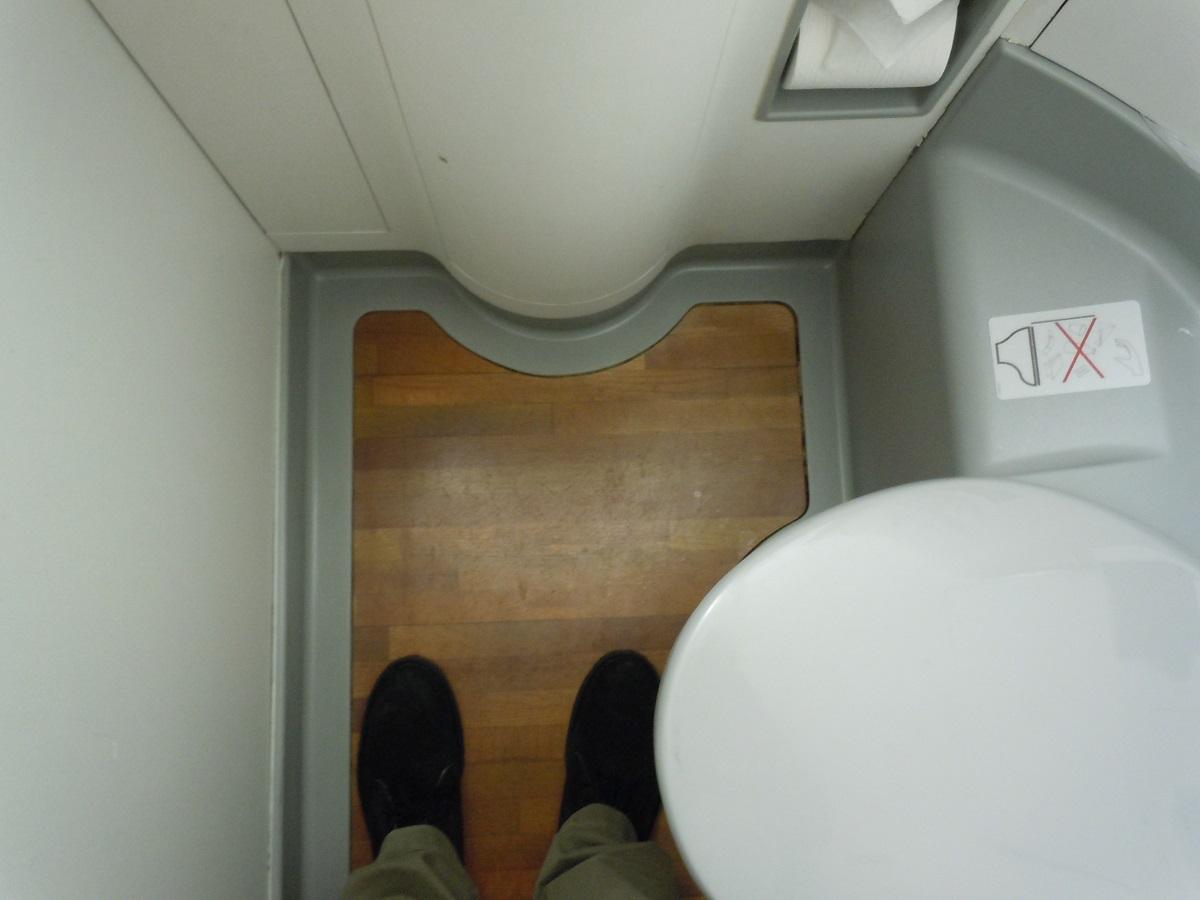木目調の床のE170のトイレ
