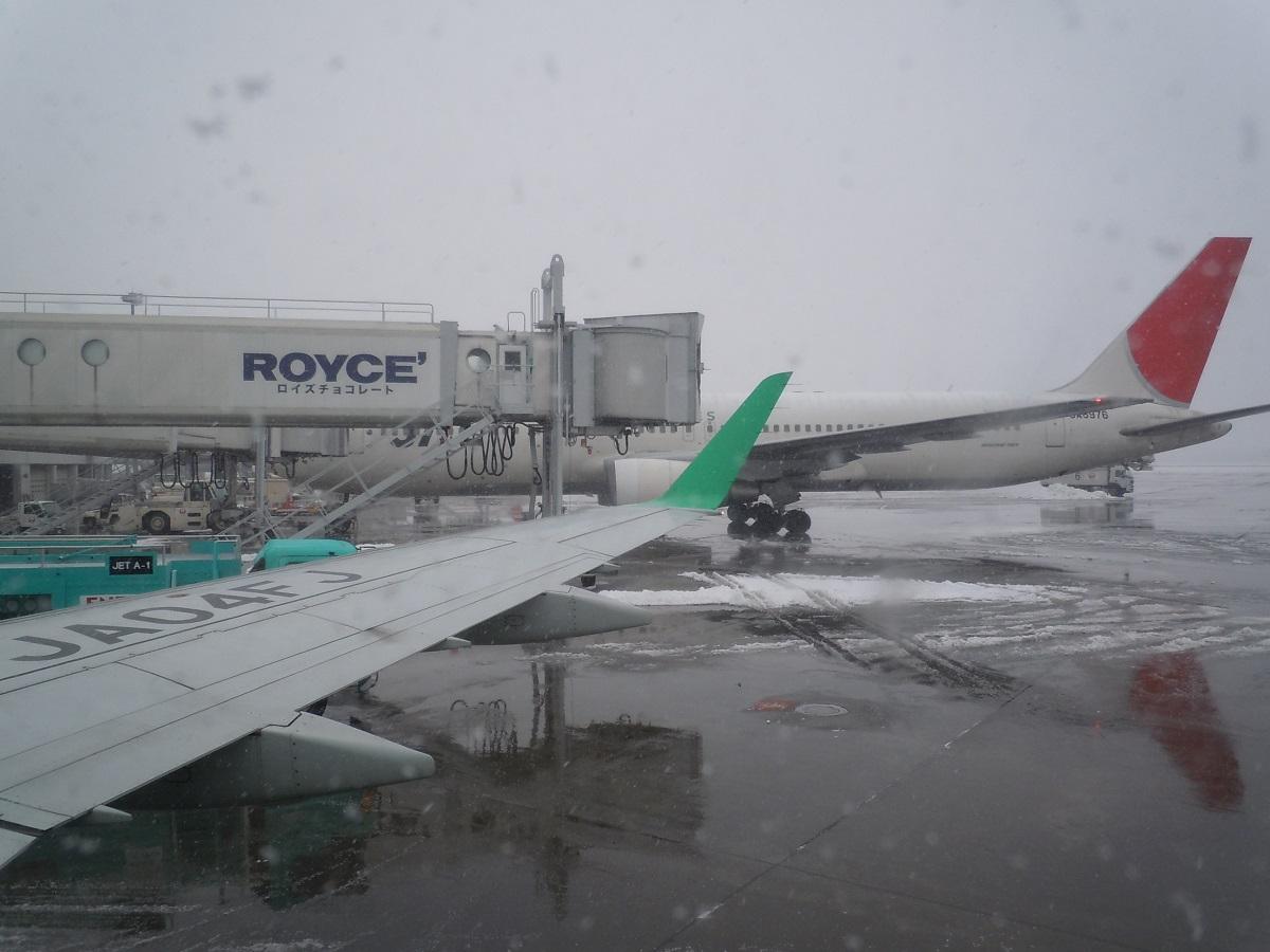 雪降る新千歳空港に到着時の様子