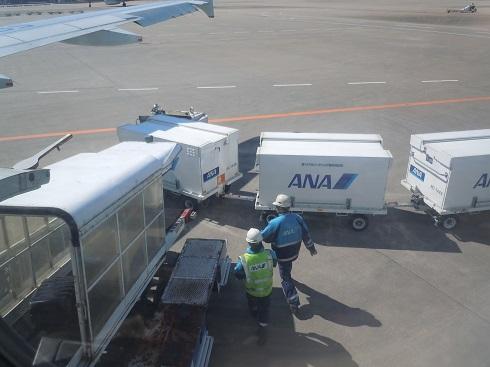 成田空港にて手荷物を機体から降ろすグランドハンドリングスタッフさん