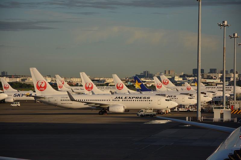ずらりと羽田空港に駐機したB737型機