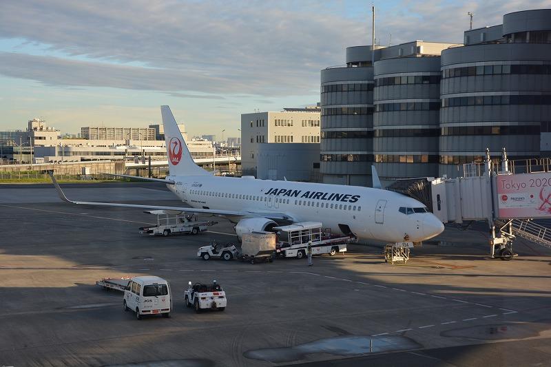 今回の搭乗機のJALのB737-800(JA334J)