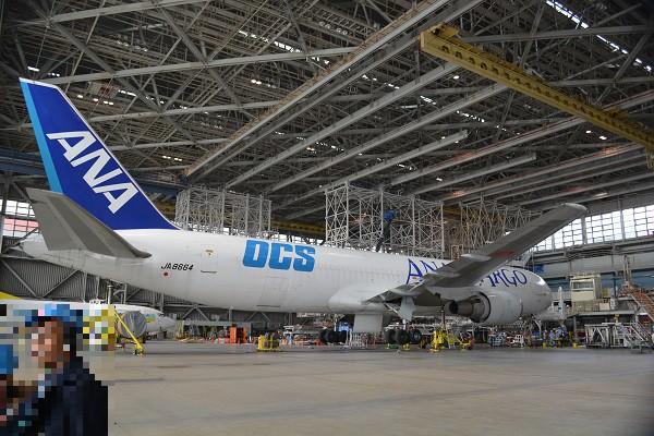 羽田空港の整備工場にて整備中のANA CARGOのB767-300BCF