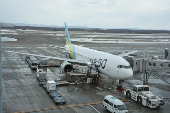 搭乗機のエアドゥのB767-300型機(JA8359)