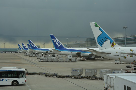 羽田空港に並ぶANAの尾翼
